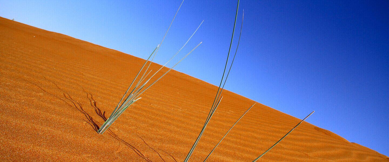 desert_slide3